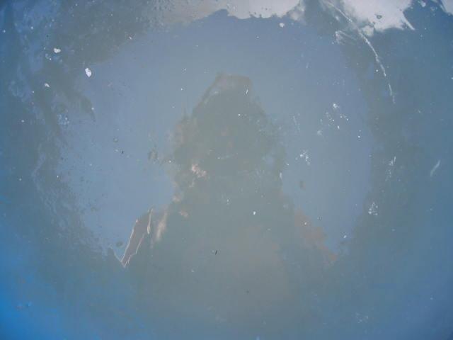 flinke vorst en 3 cm ijs in de waterton
